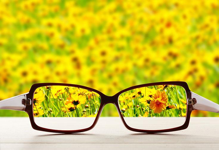 Eyeglasses for clear vision